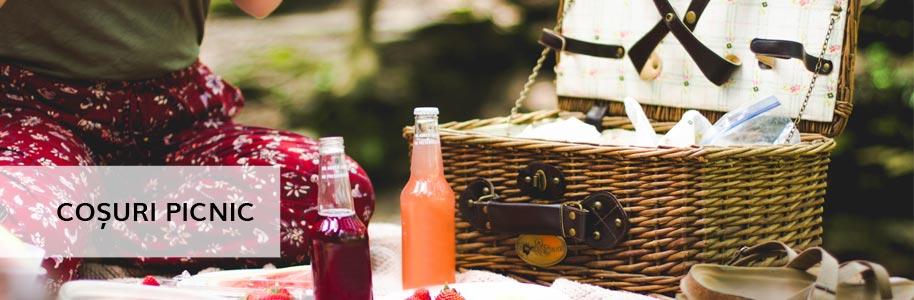 Coșuri picnic